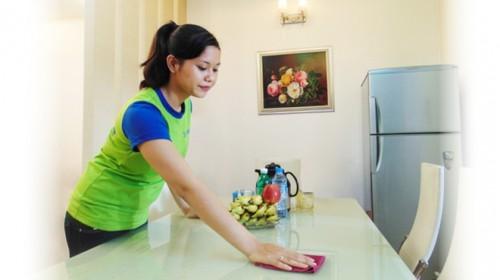 Theo ILO, Việt Nam là một trong số ít các quốc gia trong khu vực đưa lao động giúp việc gia đình thuộc phạm vi điều chỉnh của pháp luật lao động