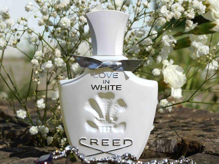 Creed  Love In White – Hương thơm của sự si mê